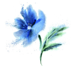 Watercolor Blue Flower. Hand Painted Illustration.