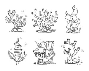 Vintage corals and seaweeds in hand drawn, doodle, sketch style vector set