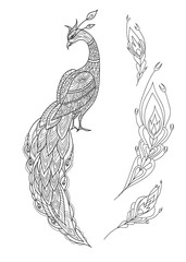 Ornamental fantasy peacock hand drawn. Vector illustration. Folk design. Line art. T-shirt designs.