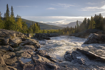 Golden light shining on wild river flowing down the beautiful Swedish landscape