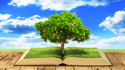 Concept of knowledge. Tree with fruit of knowledge growing out o