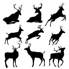 Set of deers  silhouette illustration, isolated on white background. .