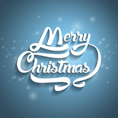 Christmas greeting card text. Merry Christmas lettering, vector
