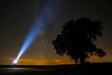 Milchstraße Baum Taschenlampe