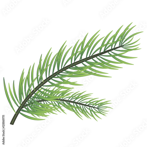christmas tree branch vector - photo #42