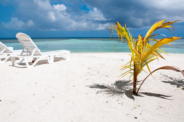 Tropical beach in Maldives, island Thinadhoo