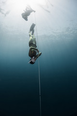 Wall Mural - Two lady free diver descending along the rope in the depth