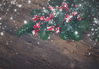 red and white christmas - twig with red berries and green evergreen tree on wood, retro toned