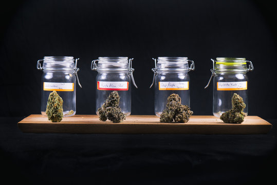 Assorted cannabis bud strains and glass jars - medical marijuana