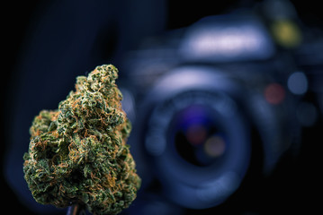 Dried cannabis bud in front of digital camera lens - marijuana p