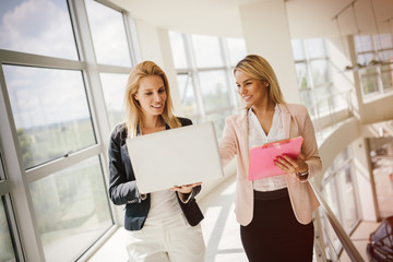 Professional businesswomen working at office