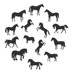 Set of Vector Silhouettes of Horses Breeds
