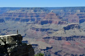 Arizona, USA - july 7 2016 : the Grand Canyon