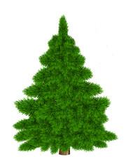 Christmas tree illustration, isolated on the white background