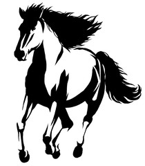 black and white linear paint draw horse illustration