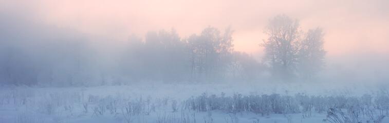 Misty winter panoramic landscape. Misty Christmas morning.