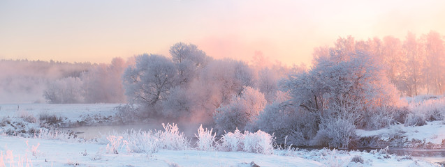 Bright winter sunrise. White frosty  trees in Christmas morning.