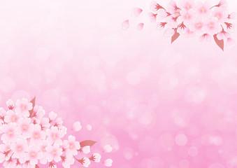 サクラの背景 ピンク