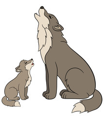 Cartoon animals. Father wolf howls with his little baby.