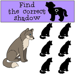 Educational game: Find the correct shadow. Cute beautiful wolf s