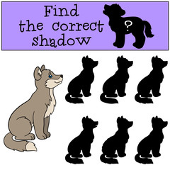 Educational game: Find the correct shadow. Little baby wolf smil