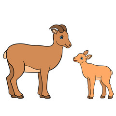 Cartoon animals. Mother urial with her little baby.