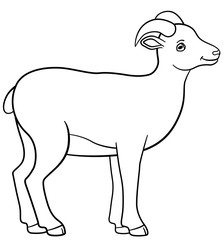 Coloring pages. Little cute lady urial smiles.