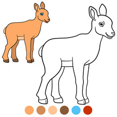 Color me: urial. Little cute baby urial smiles.