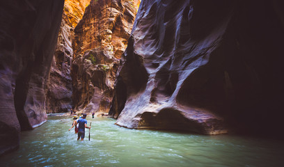 Tuinposter Rivier zion narrow with vergin river in Zion National park,Utah,usa.