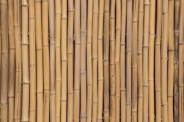 Textur Bambus