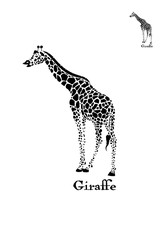Vector giraffe logo illustration. Wild animal.