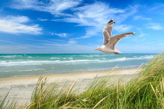 Strand am Meer
