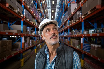Warehouse worker looking at cardboard boxes on shelves
