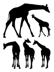 Cute giraffe gesture animal silhouette. Good use for symbol, logo, web icon, mascot, sign, or any design you want.