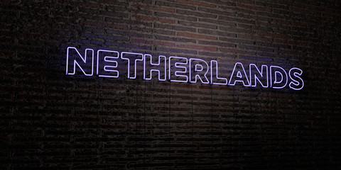 NETHERLANDS -Realistic Neon Sign on Brick Wall background - 3D rendered royalty free stock image. Can be used for online banner ads and direct mailers..