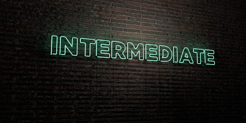 INTERMEDIATE -Realistic Neon Sign on Brick Wall background - 3D rendered royalty free stock image. Can be used for online banner ads and direct mailers..