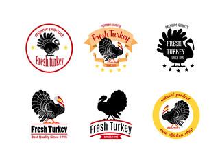 Vector illustration badge logo collection for a turkey shop.