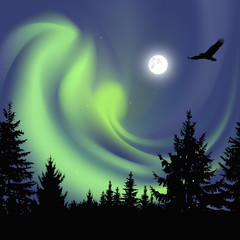Silhouette of coniferous trees on the background of colorful sky.  Flying eagle. Night. Moonlight.  Green northern lights
