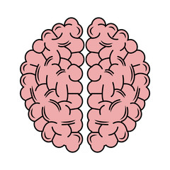 Brain icon. Human organ mind and science theme. Isolated design. Vector illustration