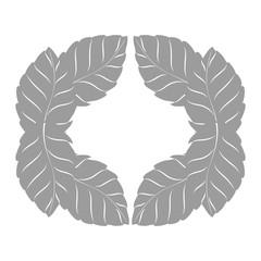 leafs plant ecology symbol vector illustration design