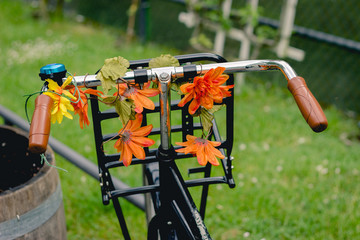 Bike with flowers in the park