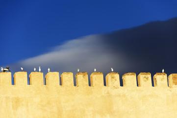 Old medina in Meknes, Morocco, Africa