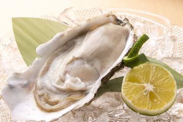 新鮮な生牡蠣料理