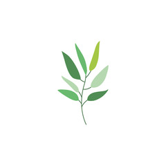 Leaves icon. Plant floral garden decoration and ornament theme. Isolated design. Vector illustration