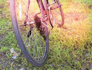 Bicycle vintage tone.