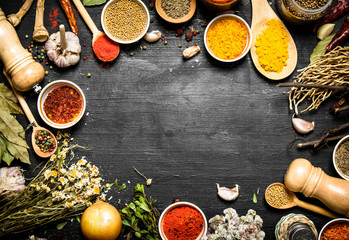 Frame of Indian spices and herbs.