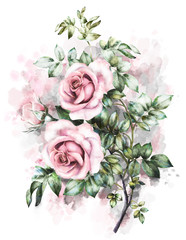 floral illustration in Pastel colors, pink rose. branch of flowers, isolated. green Leaf and buds. Cute composition for wedding or greeting card. bouqet on watercolor background. Splash paint