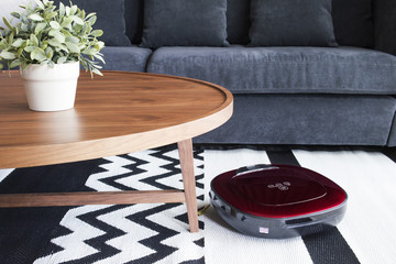 Robot vacuum cleaner cleaning the floor in cozy living room.