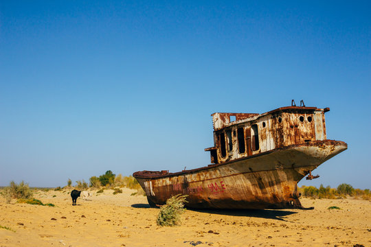 Old rustic boats and ships in a desert around Moynaq, Muynak or Moynoq - Aral sea or Aral lake - Uzbekistan, Central Asia.
