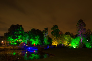 Enchated Gardens at night
